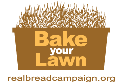 Bake your Lawn