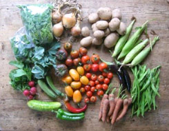 Cropshare produce