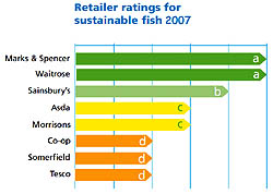 Retailer ratings for sustainable fish 2007
