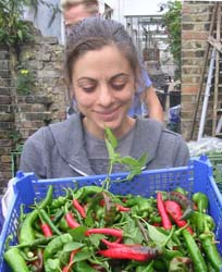 Ida Fabrizio with chillies at Growing Communities, Hackney