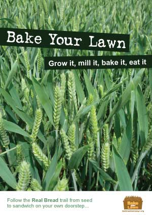 Bake Your Lawn: Grow it, mill it, bake it, eat it