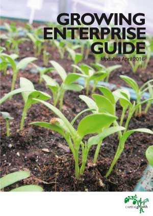 Growing enterprise guide