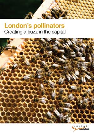 London's pollinators: Creating a buzz in the capital