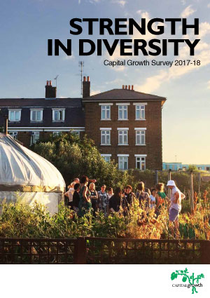 Strength in diversity: Capital Growth Survey 2017-18