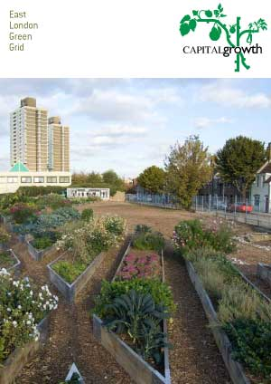 East London Green Grid: Supporting community food growing in East London