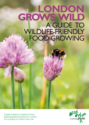 London Grows Wild: A guide to wildlife-friendly food growing