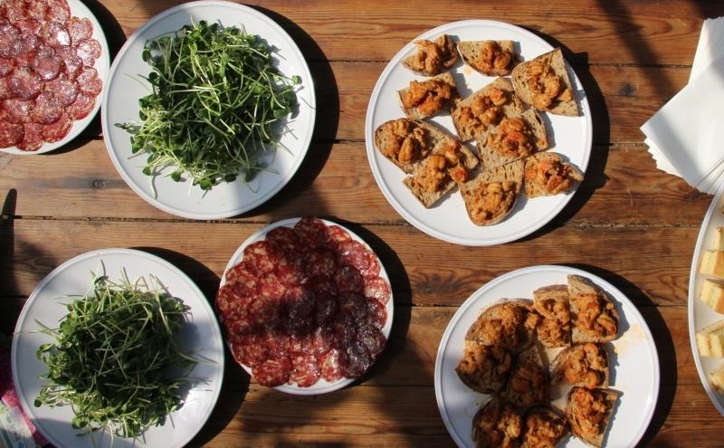 Food table. Photo credit: Sustain