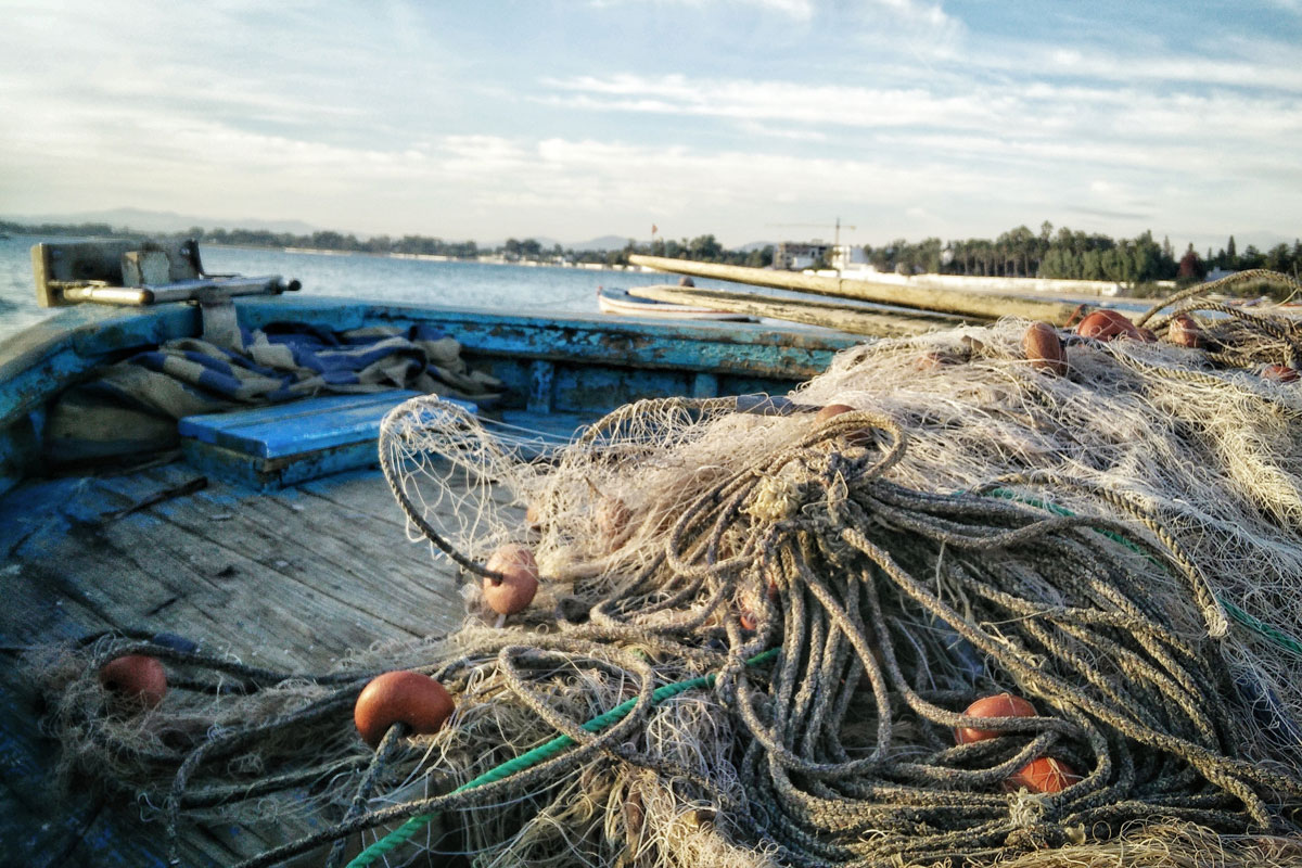 Fishing net. Photo credit: Pexels