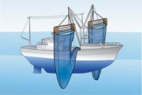 Demersal trawling