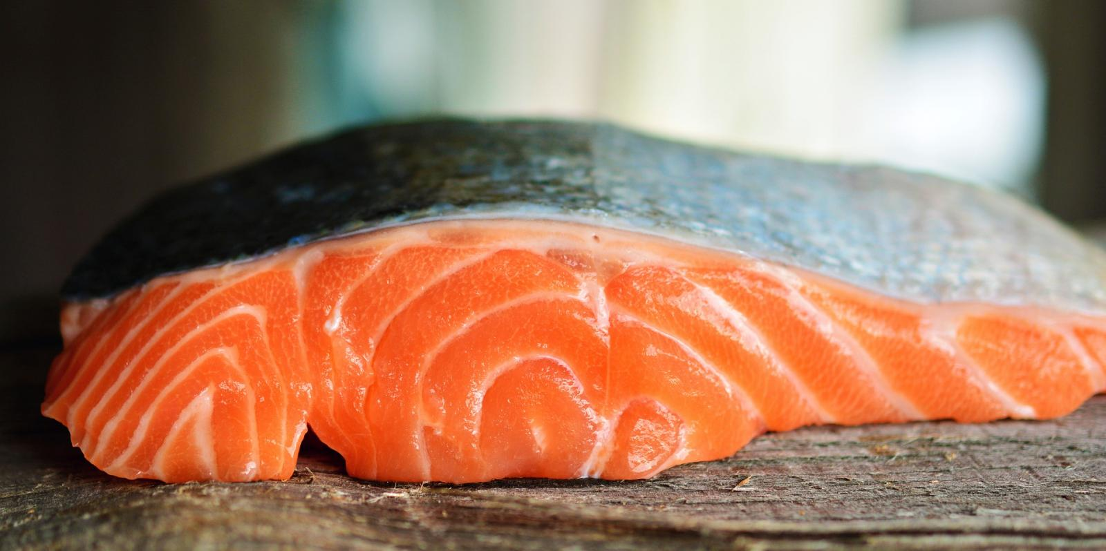 Salmon. Photo credit: Pixabay