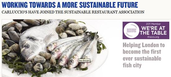 Carluccio's sustainability commitments