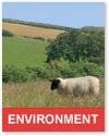 Environmental farming