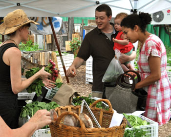 Selling food grown on a rooftop at Brooklyn Grange Farm in New York