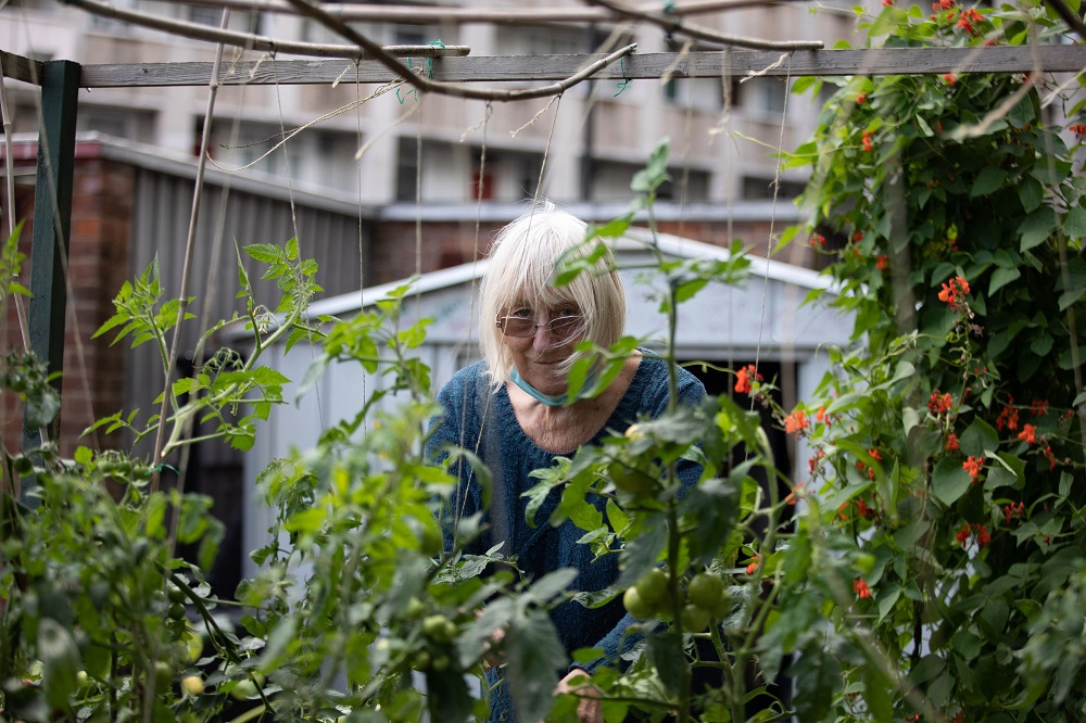 Janet from Cranbrook Community Food Garden. Photo by Zoe Warde Aldam.