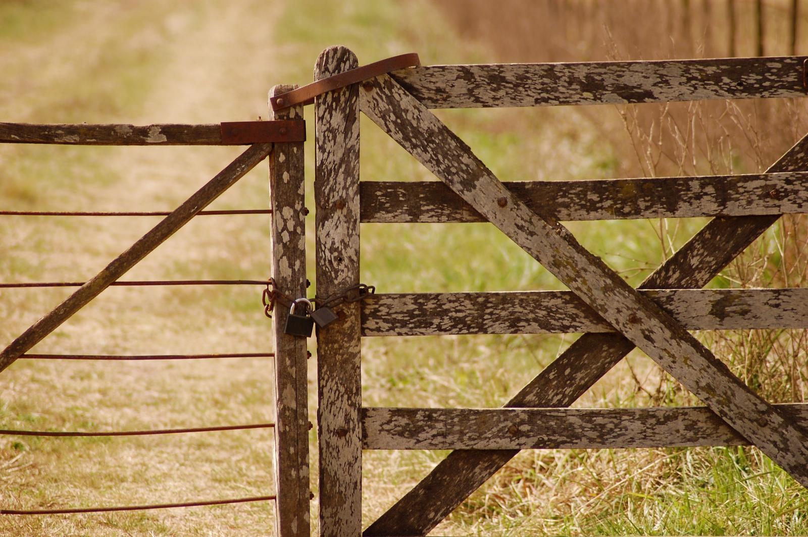 Farm gate. Photo credit: Pexels