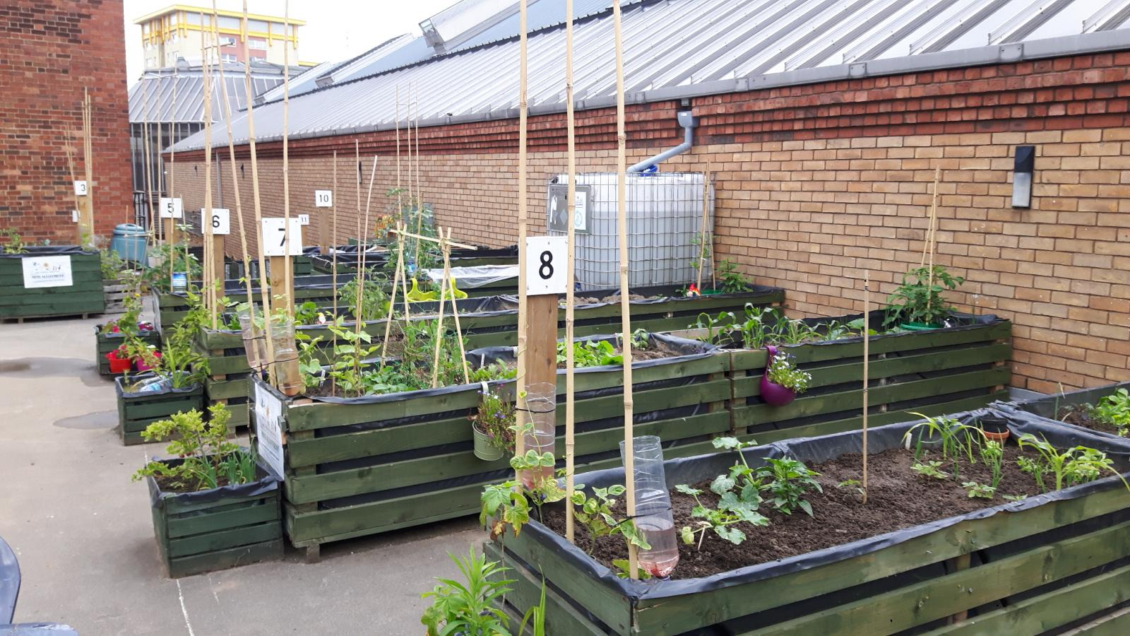 One of the Grow Wakefield sites, credit: Grow Wakefield