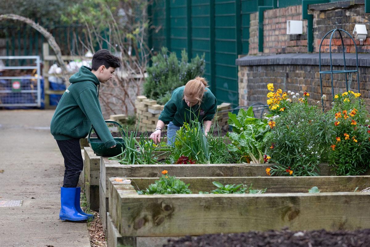Young Farmers at Surrey Docks Farm by Zoe Walde-Aldam