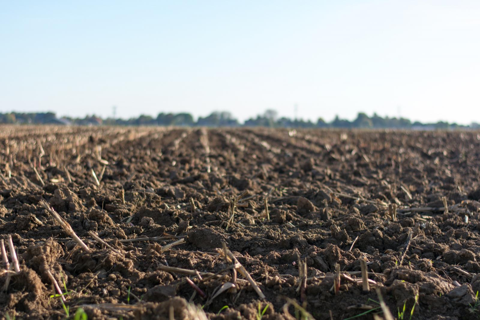 Farm soil. Photo credit: Pexels