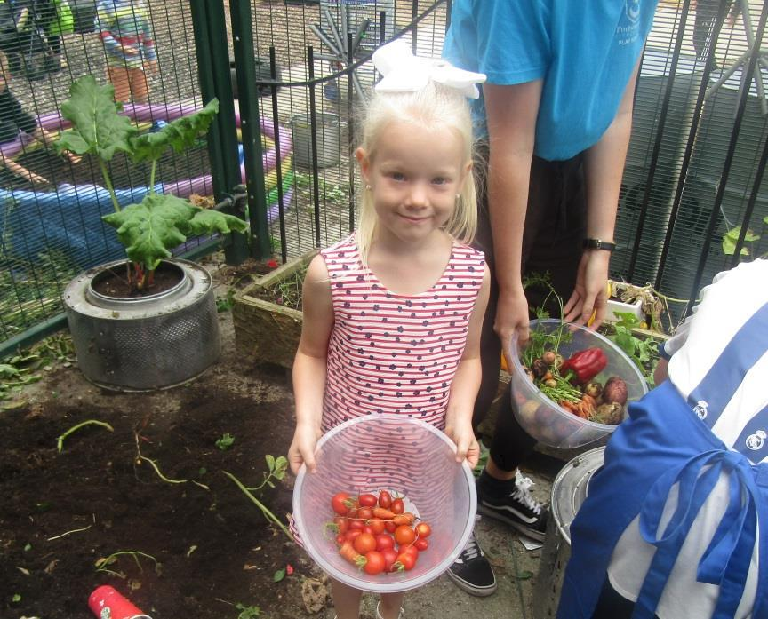 Clubs and playgrounds in Portsmouth grow their own vegetables. Credit: Portsmouth City Council