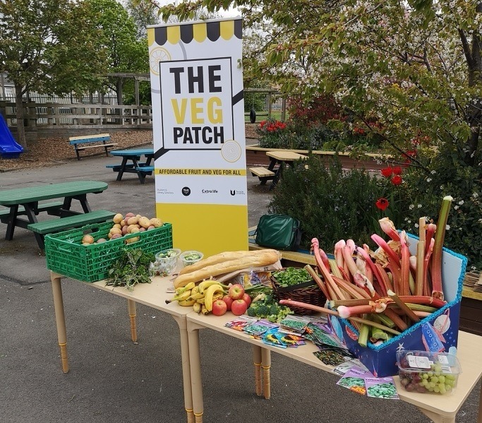 Veg Patch in primary school. Credit: Middlesbrough Environment City