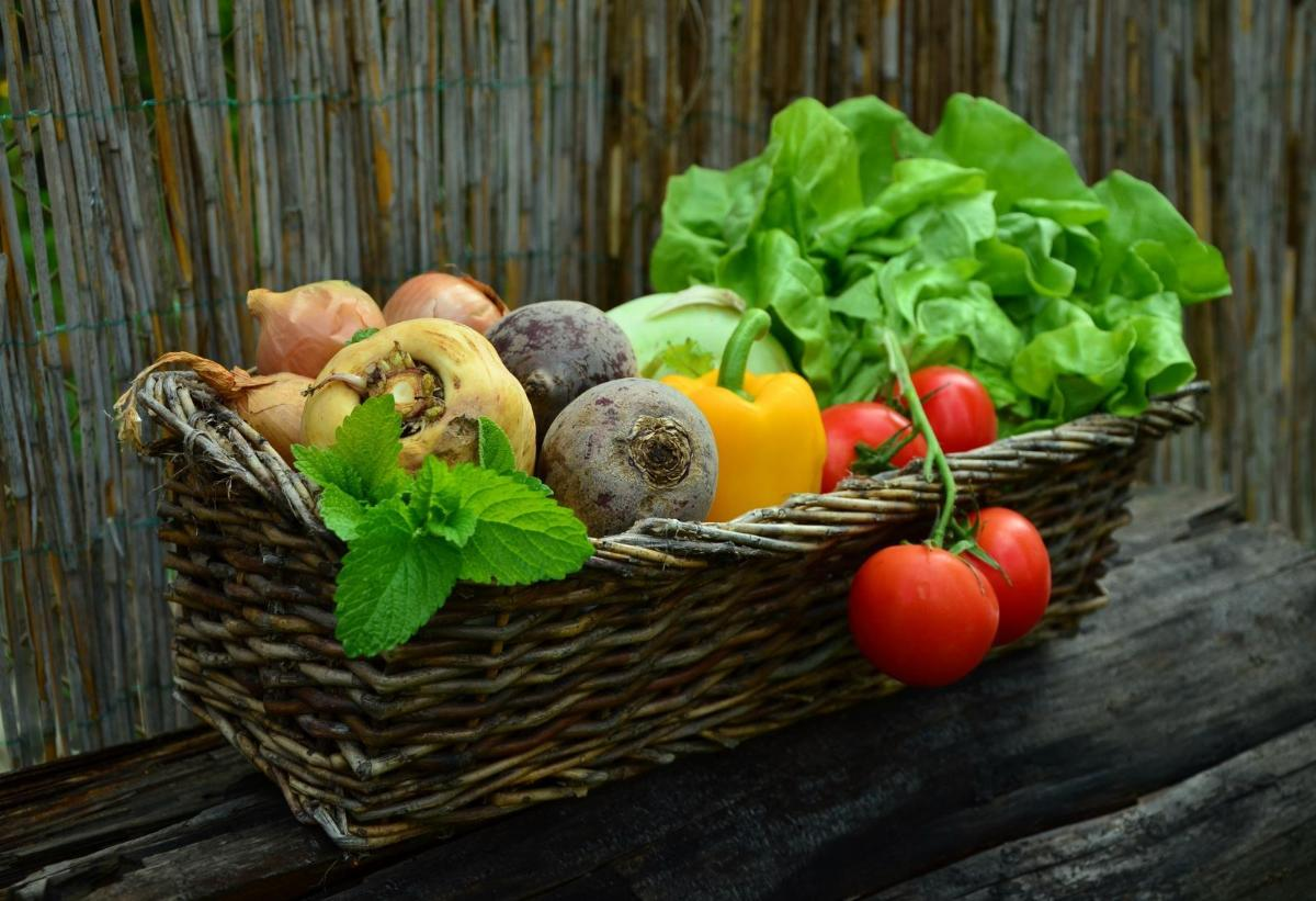 Basket fresh vegetables. Photo credit: Pixabay