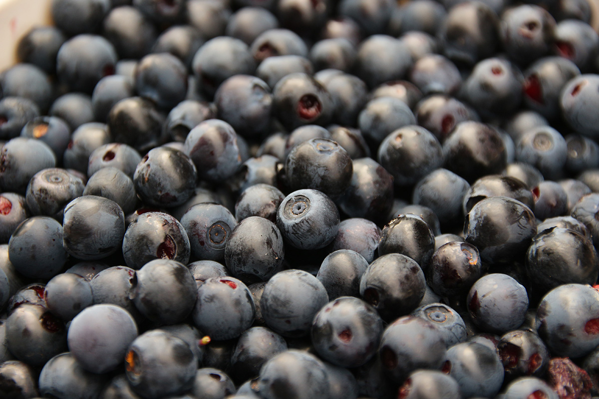 Blueberries by Chris Young