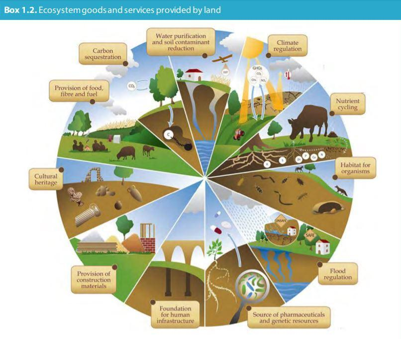 ecosystem services from land use - CCC report