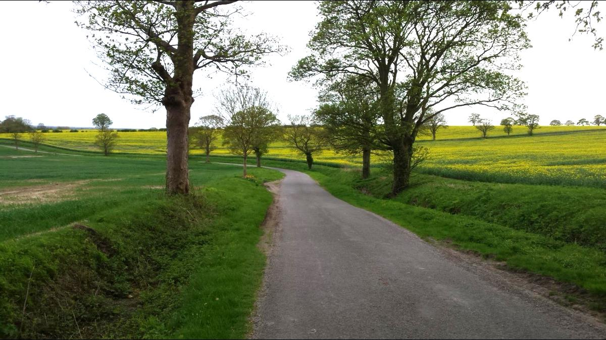RSA researchers will tour the UK by bike, asking for people's views. Photo credit: Food, Farming and Countryside Commission