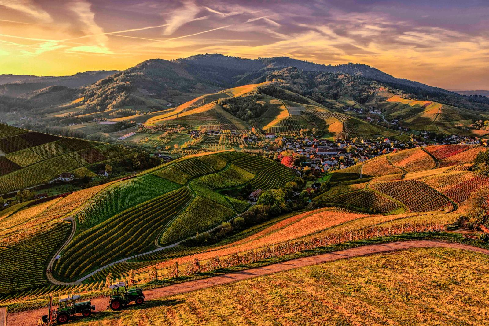 Mountain view of farmland. Photo credit: Pexels