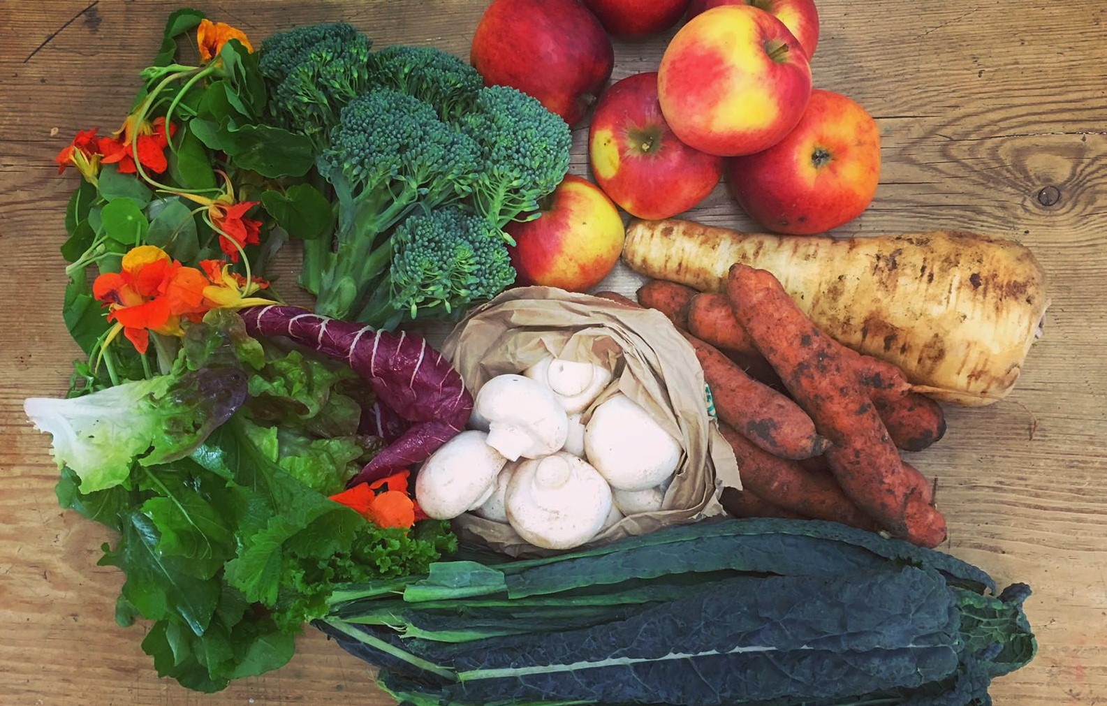 Plants galore from Kentish Town Vegbox, a Better Food Trader