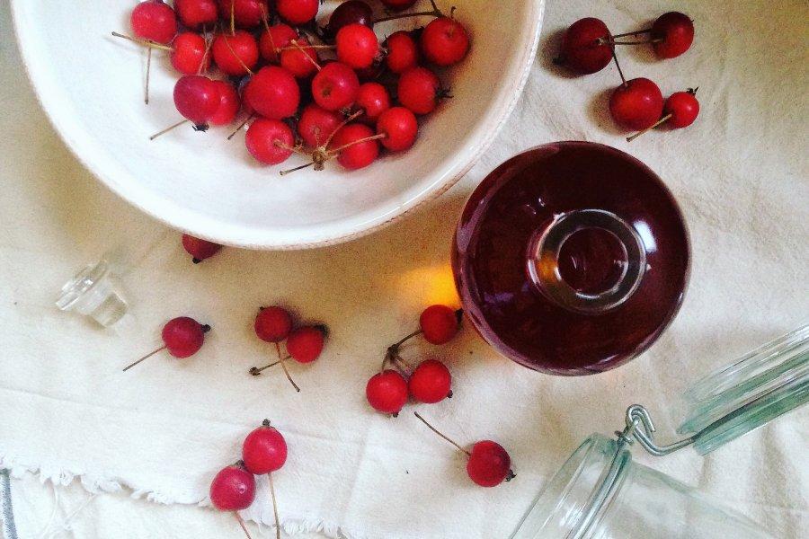 Pop-up Ferments at The Table Café with Rachel de Thample