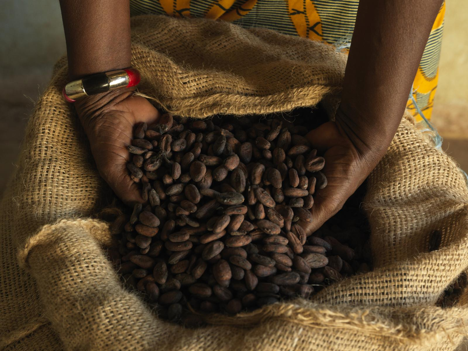 Cocoa beans in hands. Photo credit: The Fairtrade Foundation