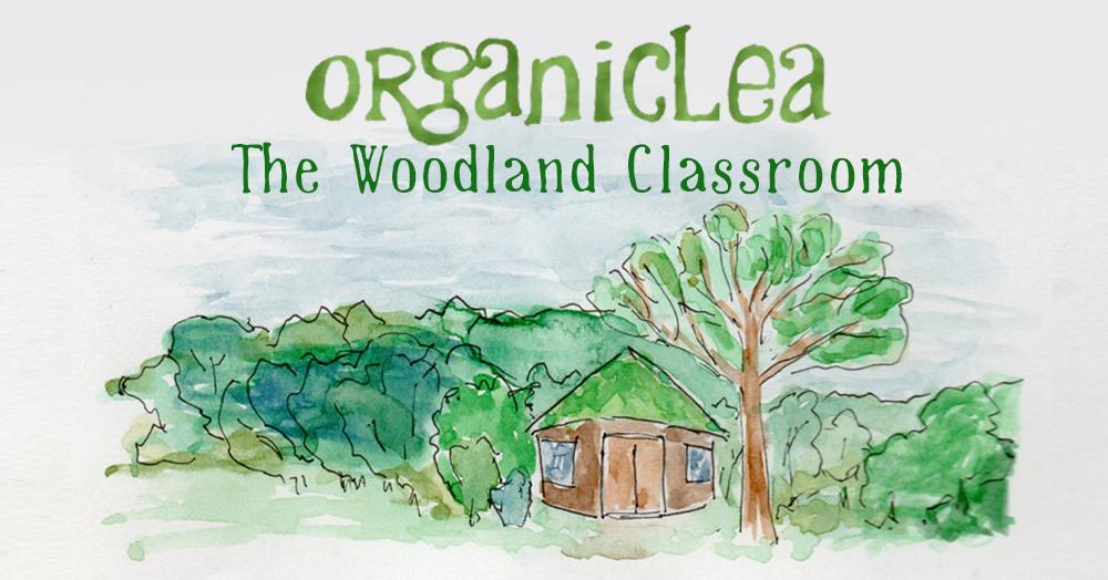 Woodland classroom. Photo credit: OrganicLea