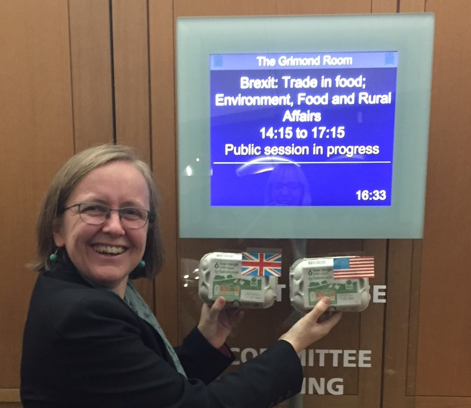 Sustain's Kath Dalmeny shows eggbox props used in oral evidence to the EFRA Committee, illustrating comparative salmonella rates in UK and US eggs